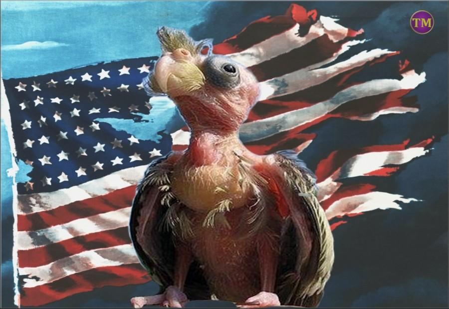 """Самые последние """"адские"""" санкции США, которые добьют Россию окончательно"""