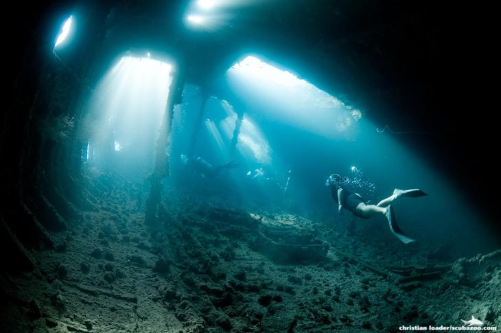 45 красивых подводных фотографий, от которых замирает дыхание