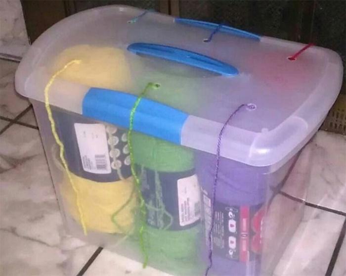 Пластиковые контейнеры (подборка)