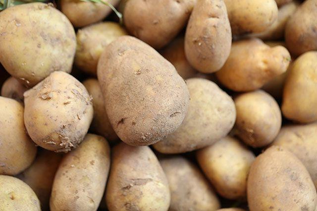 Какие сорта картошки самые рассыпчатые?