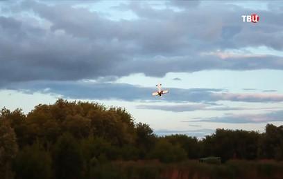 Падение самолета в Тамбове засняли на видео