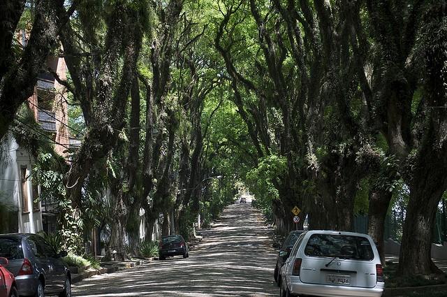 ulitsa-rua-gonsalu-de-karvalo-05