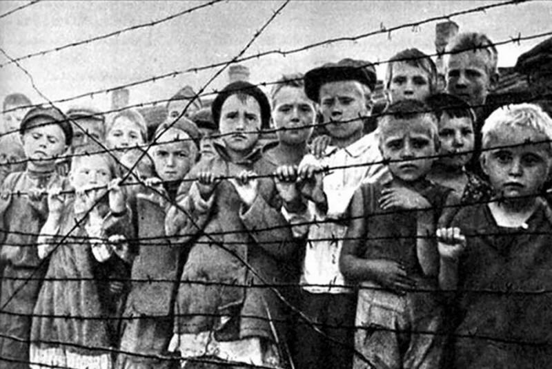Тайна Красного Берега. Как нацисты забирали кровь у советских детей