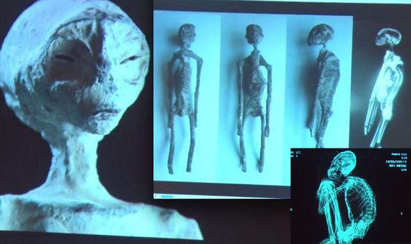 Пять мумий Наска, похожих на инопланетян: Реальность или подделка?