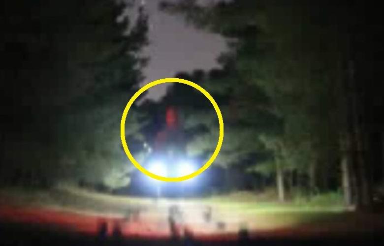 В Рэндлшемском лесу сфотографировали огромного пришельца