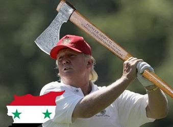 В США подали в суд на Трампа за ракетный удар по Сирии