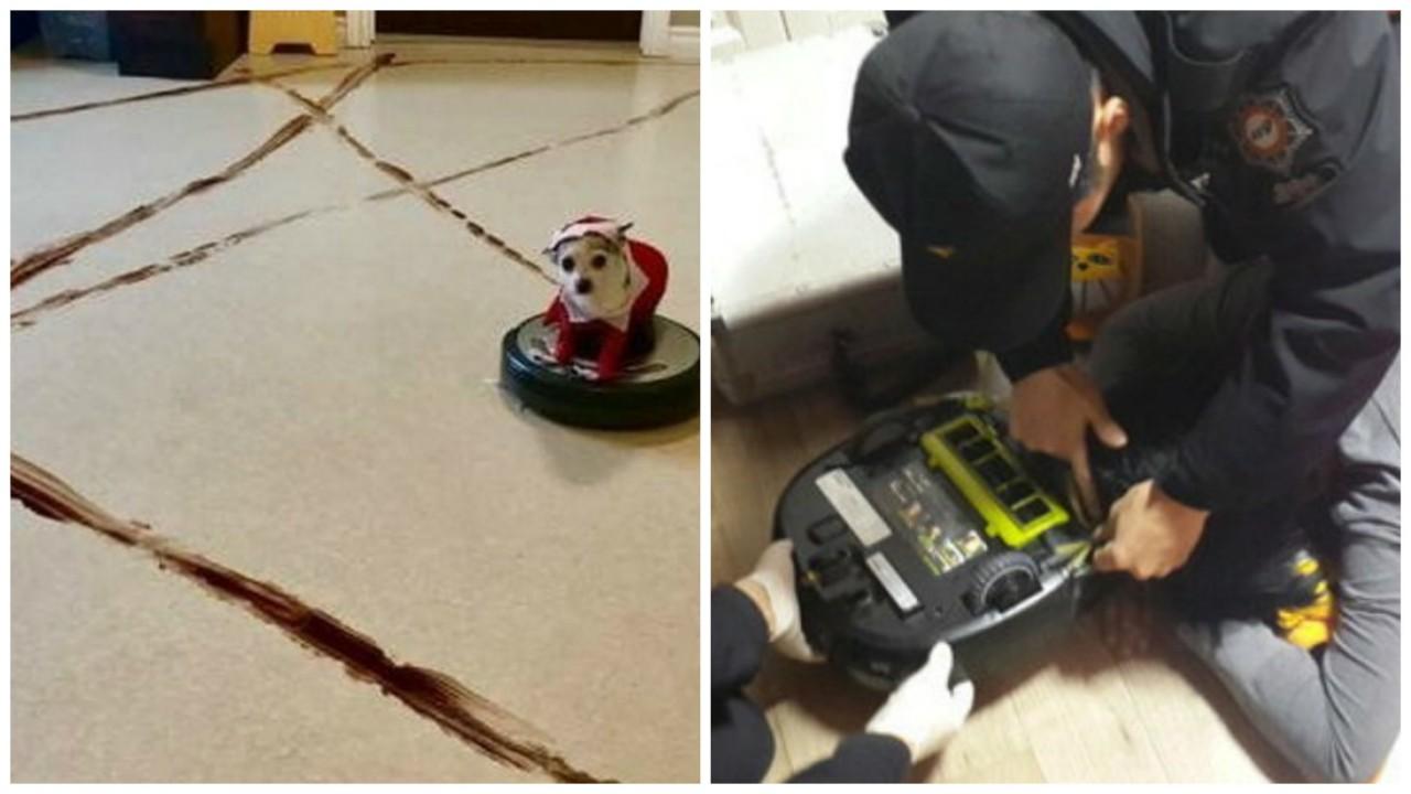 13 причин, почему не стоит покупать робот-пылесос