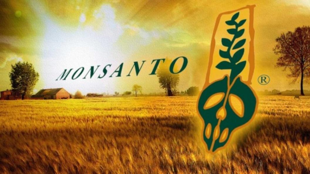 """Аграрии в панике: ФАС дала """"…"""