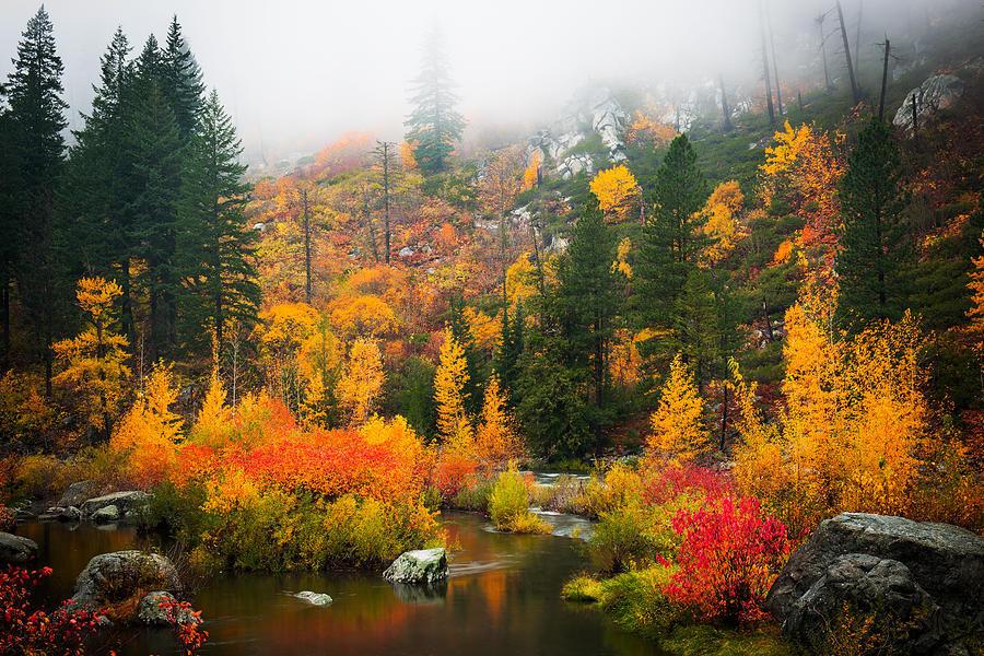 Яркие пейзажи от фотографа Dan Mihai