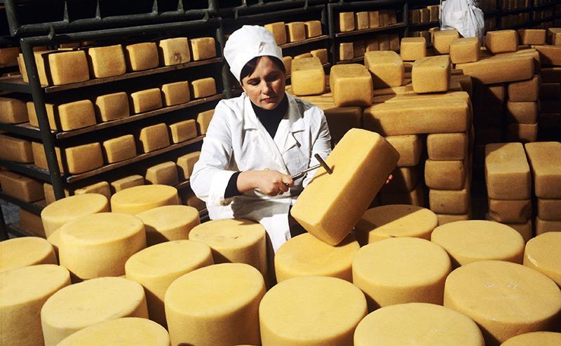 Вместо алтайского сыра – непонятно что из Украины