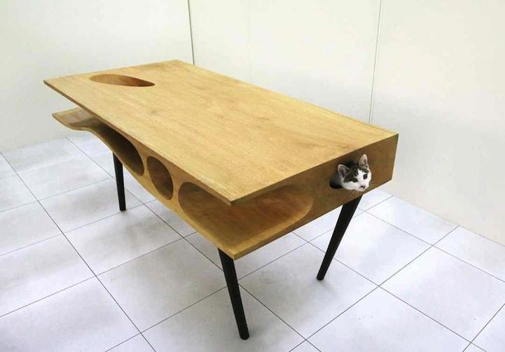 Стол с секретом: тандем хозяина с котом обеспечен