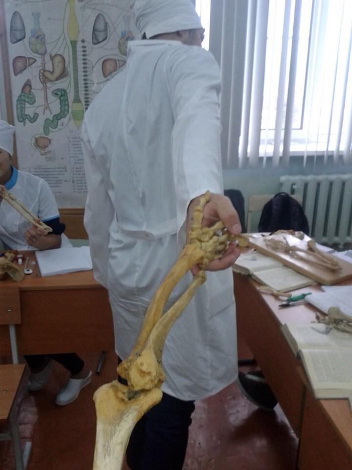 Студенты-медики весёлые ребята больница, прикол, россия, смешно, фото