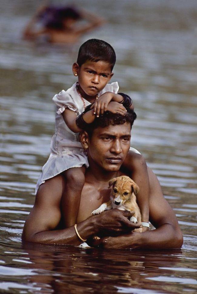 33. Всё самое дорогое... Любовь, дети, животные