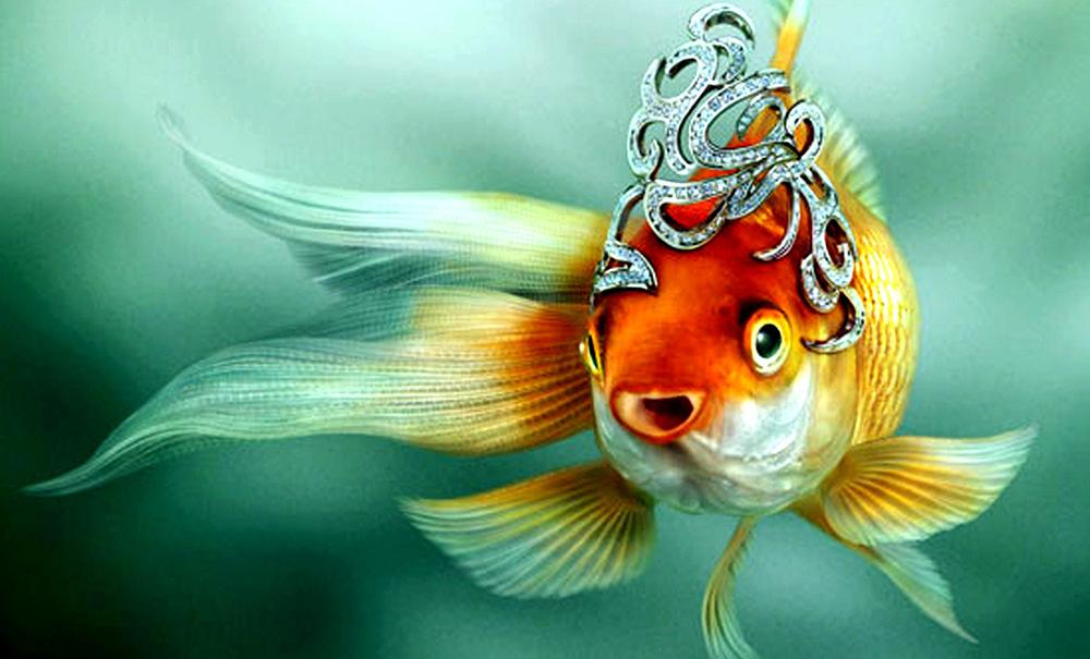 skazka-o-rybake