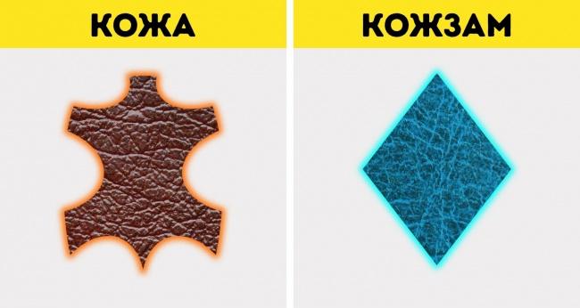 10 разновидностей натуральной кожи и как быстро отличить ее от кожзама