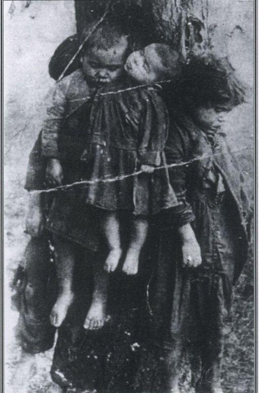 Разоблачаем ! Жертвы геноцид…