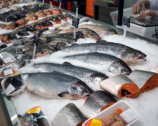 Россельхознадзор рассказал, какие продукты питания в России являются фальсификатом