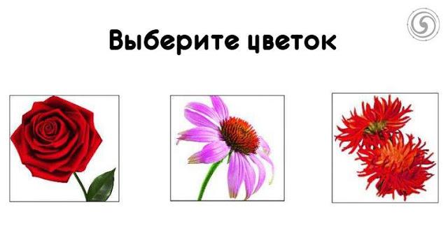 Выберите священный цветок и узнайте, какой женщиной вы являетесь