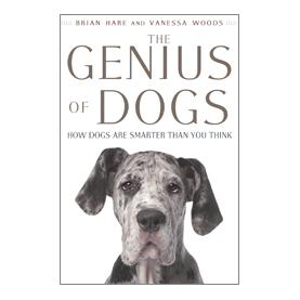 Что говорят собаки, когда лают?