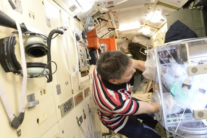 Российские космонавты напеча…