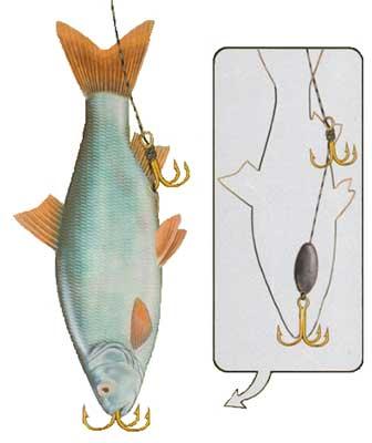 Приманка для рыбы своими руками на плотву