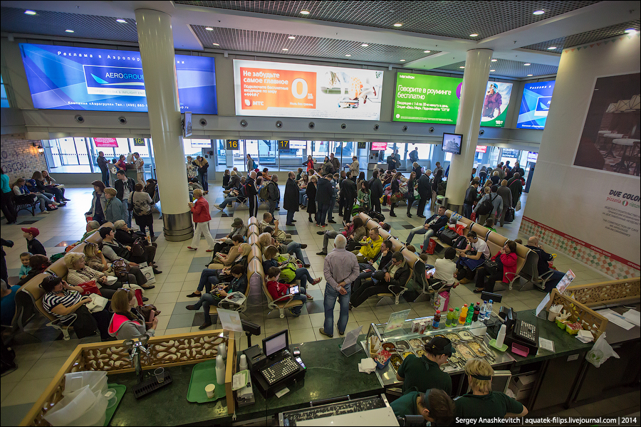 О конских ценах в аэропортах