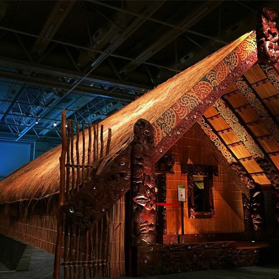 Национальный музей Те-Папа-Тонгарева (Веллингтон, Новая Зеландия)