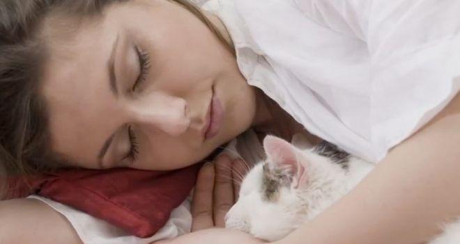А вы тоже пускаете кота в свою кровать? Тогда вам стоит прочитать это