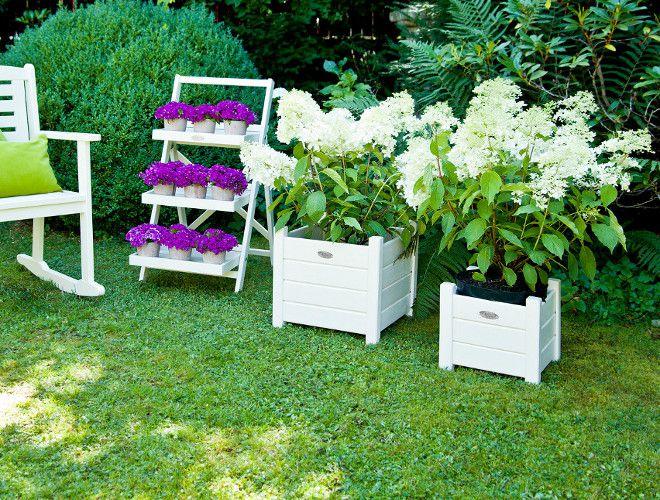 кашпо для цветов гортензии