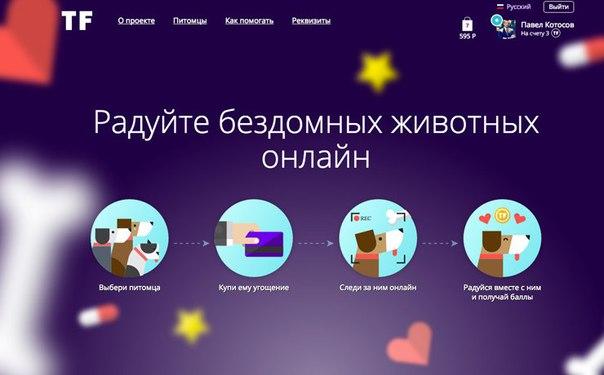 В России запущен необычный сервис помощи бездомным животным18мая команда...