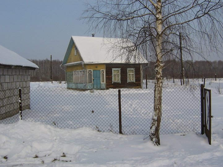 Дачная переделка: как хату на заброшенном <u>самодельные</u> участке в лесном заповеднике превратили в уютный дом