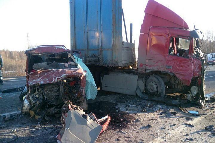 В Вологодской области фура врезалась в микроавтобус: погибли 7 человек