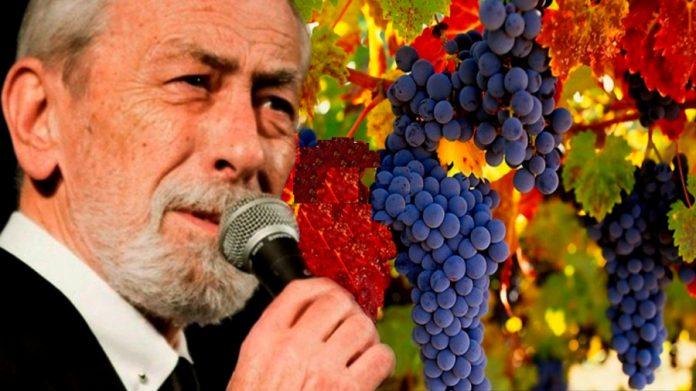 Виноградную косточку в теплую землю зарою…Песня-шедевр! Вахтанг Кикабидзе