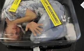 Расчленённое тело журналиста…