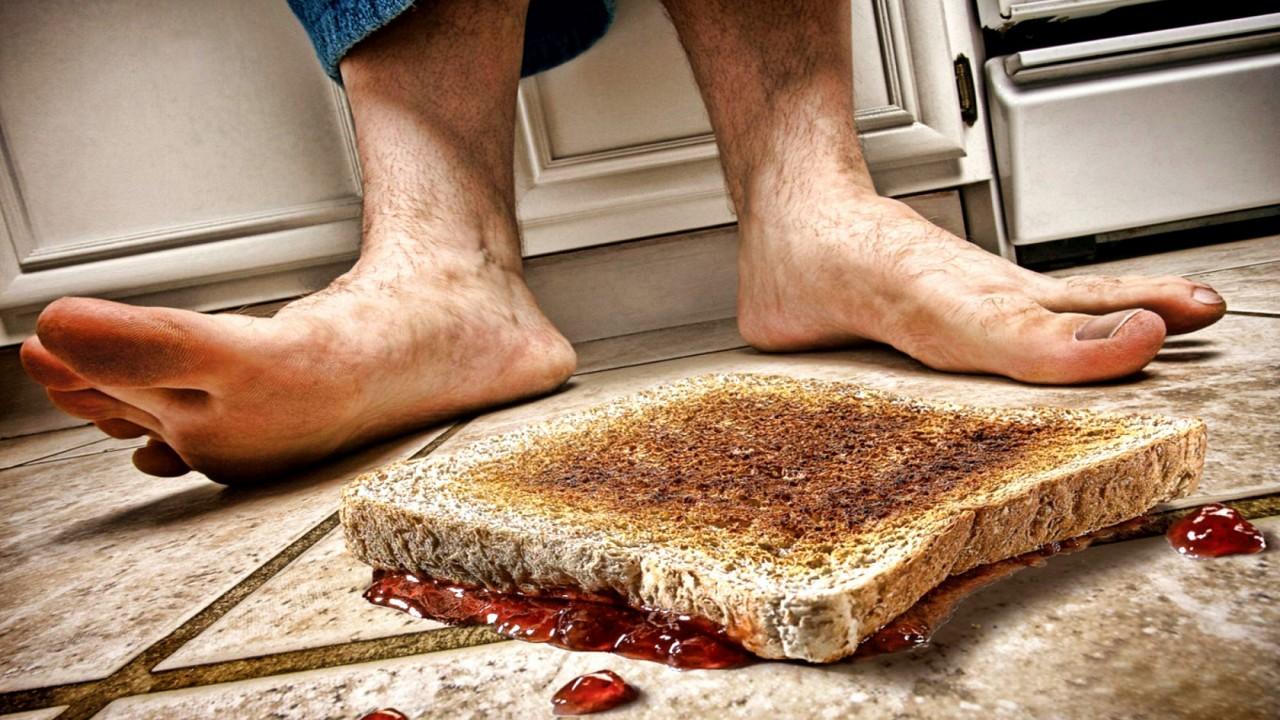 17. Упавшую на пол еду можно есть, если вы подняли её в течение пяти секунд. мифы, разрушители легенд, факты