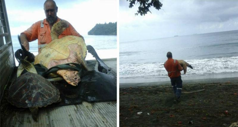 Эти мужчины покупают морских черепах, чтобы выпустить их обратно в море