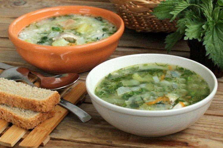 Суп с курицей и крапивой