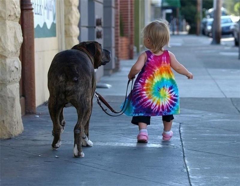 12. Прогулка. Любовь, дети, животные