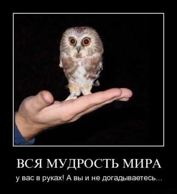 Мысли мудрых.