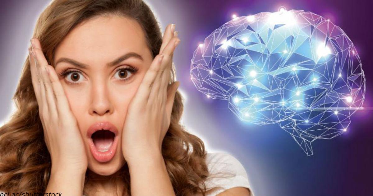 10 вещей, которые вы не знали о человеческом мозге и его возможностях