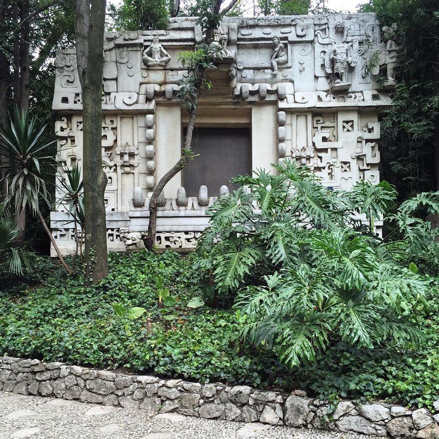 Национальный музей антропологии (Мехико, Мексика)