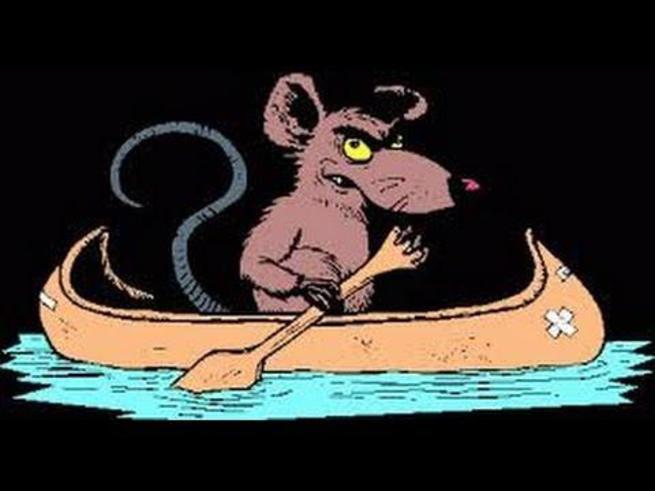 Украина: почему бегут крысы?