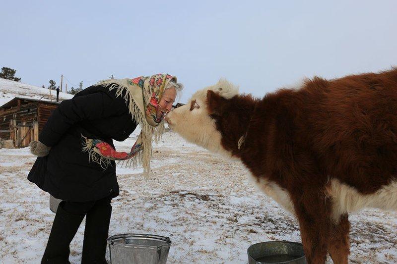 После смерти мужа Любовь Мореходова живет одна, но ей не скучно в компании любимых животных байкал, истории людей, коньки, лед на Байкале, люди, пенсионерка, россия, удивительные люди