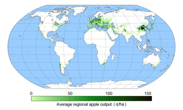 Килограмм яблочной продукции на гектар по миру.