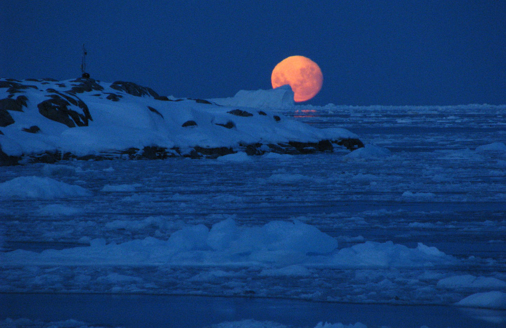 Фото-путешествие в Антарктиду