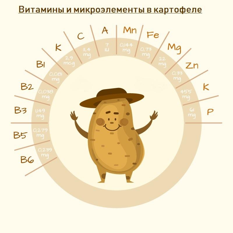 картошка польза или вред