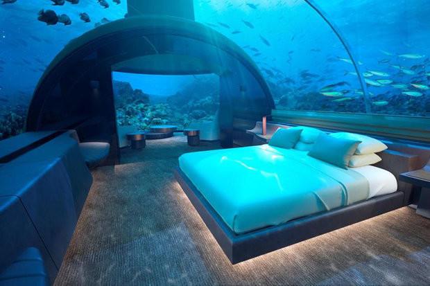 Гости этого отеля на Мальдивах смогут поспать среди акул, если, конечно, уснут