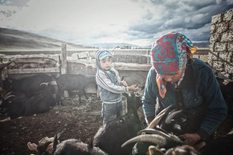 Первая ночь в Монголии - в гостях у местных жителей монголия, мотоцикл, мотоцикл с коляской, мотоцикл урал, путешественники, путешествие, средняя азия, туризм