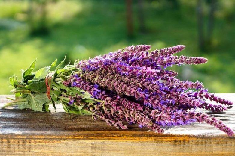 5 ароматов, способных исцелять