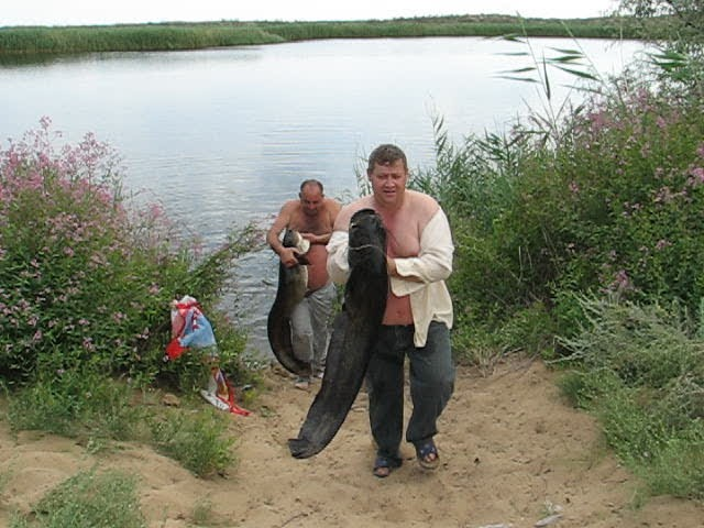 Рыбаки с уловом.